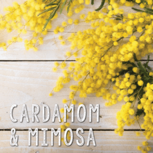 Ceara parfumata Cardamom & Mimosa